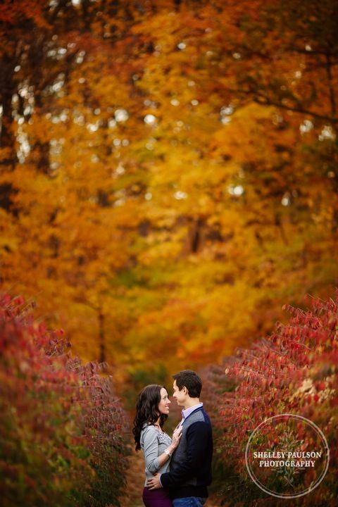 Shelley Paulson Photography - gorgeous fall engagement photo.