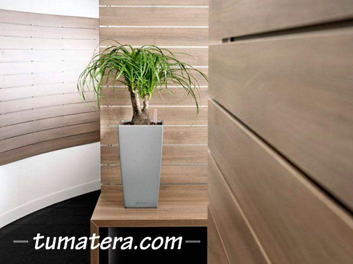 Encuentralas en: http://www.tumatera.co/products/matera-inteligente-14-mi-222241cubico/