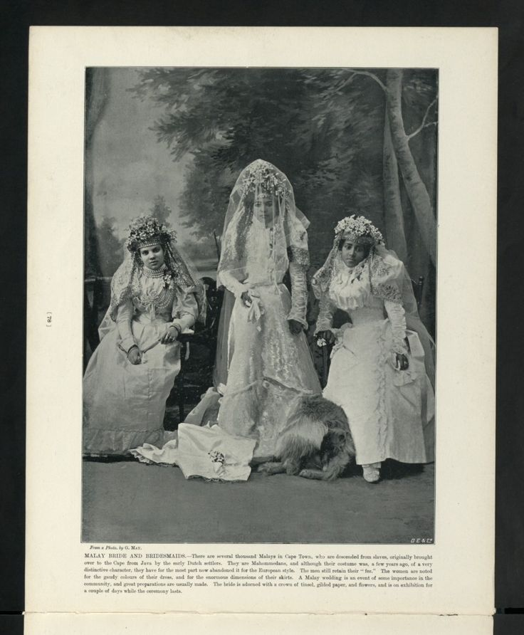 Category:Brides of South Africa - Wikimedia Commons