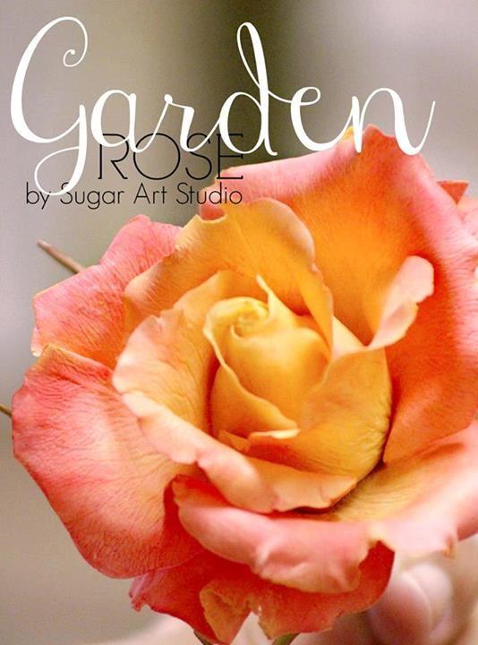 Gum Paste Garden Rose by Sugar Art Studio