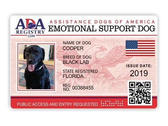 Registration Page Ada Assistance Dog Registry With Images