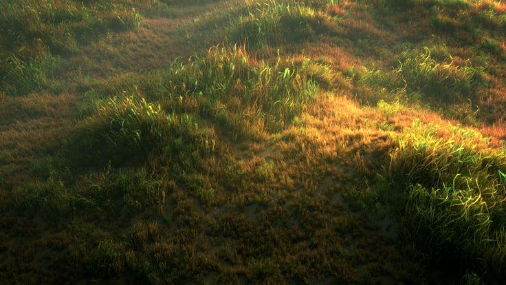 Wild Grass Field by merryxmas123