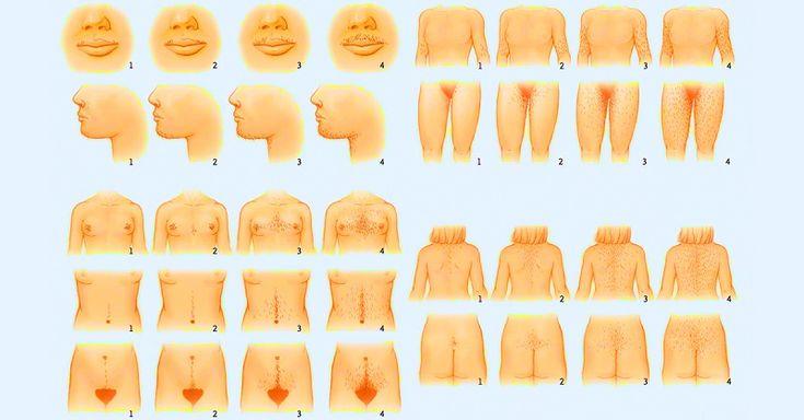 1980-е давно в прошлом, и повышенная растительность на теле уже не красит ни одну женщину. Существует множество способов избавиться от нежелательных волос в домашних условиях: бритва, крем, воск… Но после их применения зачастую появляется неприятная щетина, раздражение или вросшие волосы.  Но есть еще одно средство, о котором мы расскажем тебе. Оно поможет не только сделать депиляцию, но и уберет ороговевший слой кожи. Удаление нежелательных волос ИНГРЕДИЕНТЫ 1 ч. л. пищевой соды 1 ст. л…