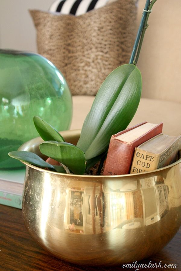 Instead of repotting your orchid, fill the rest of a big planter with books.