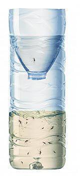 Fabriquer soi-même ce piège écologique pour mouches et moustiques. Simple à réaliser, époustouflant d'efficacité ! Un remède anti moustique et contre mouche