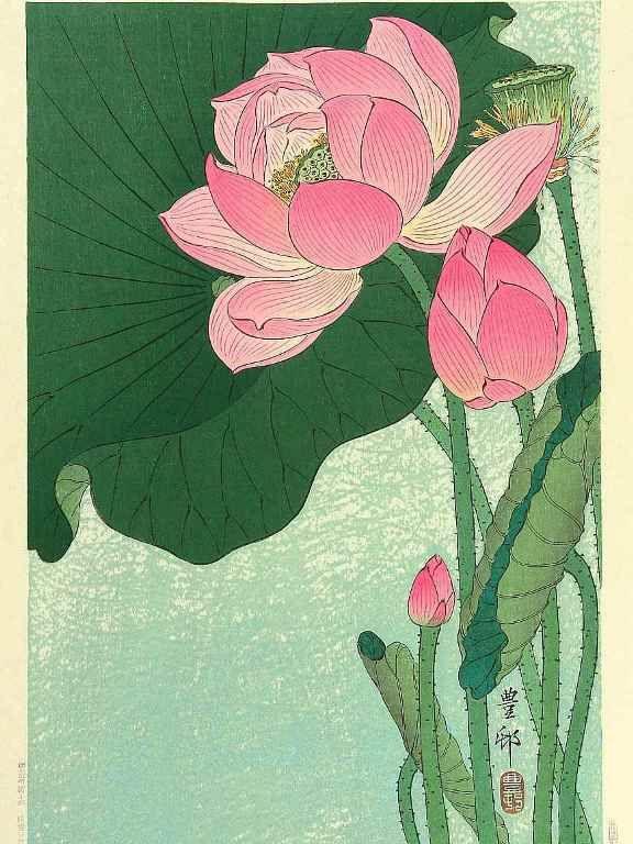 小原古邨の蓮の花の塗り絵の下絵、画像                                                                                                                                                                                 もっと見る