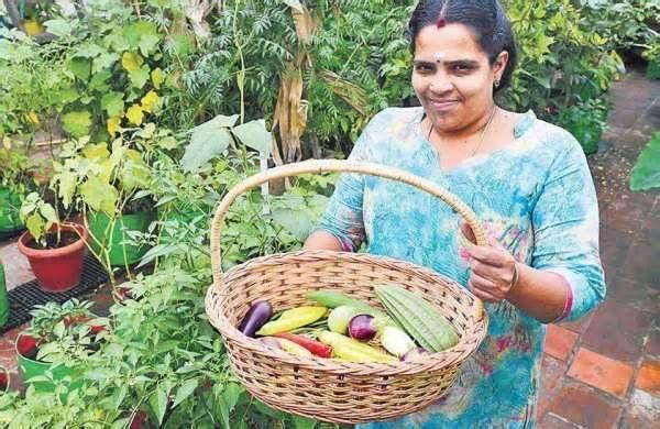 Vegetable Garden Learn Terrace Gardening From This Chennai Couple Vegetablegarden