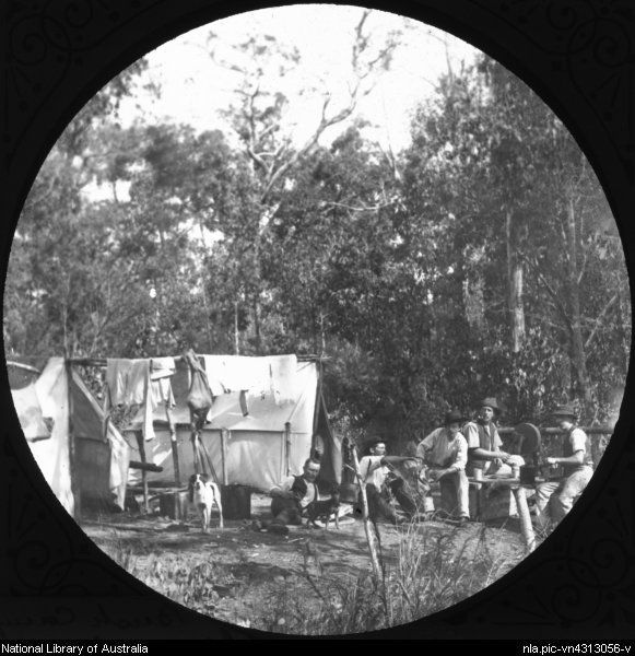 Five men and two dogs sitting outside a some tents in a bush camp, Gippsland, Victoria, ca. 1900 [transparency]