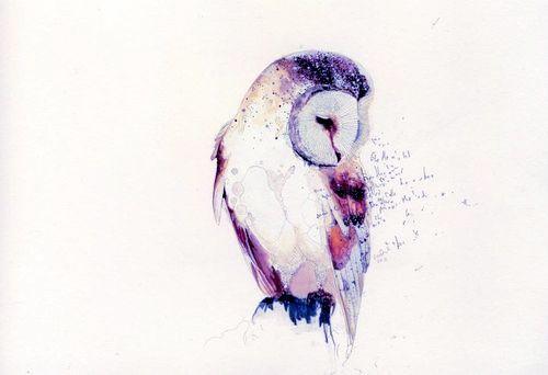 owl watercolor tattoo - Pesquisa Google