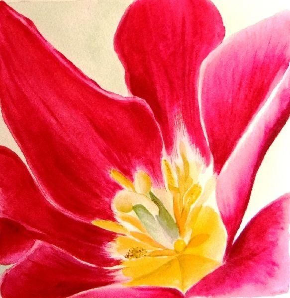 art of flowers weston