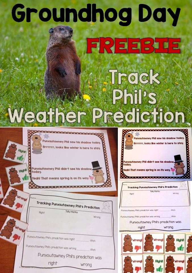 Was Punxsutawney Phil's weather prediction on Groundhog Day right? Keep track and find out with this free weather tracking activity that includes full-color cards, a cute Groundhog Day rhyme/poem, and a printable page. PLUS your students will have fun pretending to be Punxsutawney Phil giving his Groundhog Day prediction with a free app that is super simple to use. https://www.teacherspayteachers.com/Product/Free-Groundhog-Day-Weather-Activity-Interactive-Video-Activity-2352186?aref=l2lch7ng