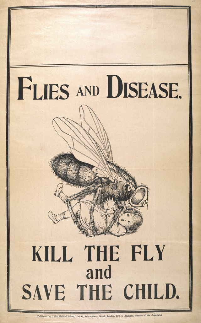 Illustration from the Medical Officer journal to promote better public health. At the time, flies were held responsible for contaminating food and spreading diseases such as tuberculosis and anti-fly campaigns were held across Britain, Australia, and the United States. (1920)