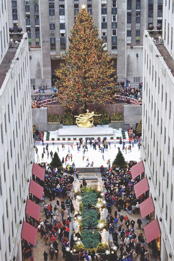 Kulinarische Kolumne: Weihnachten in New York!