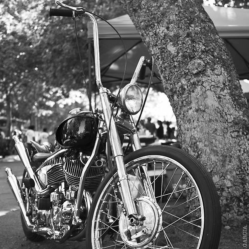 Choppers, Bobbers and Rat Bikes