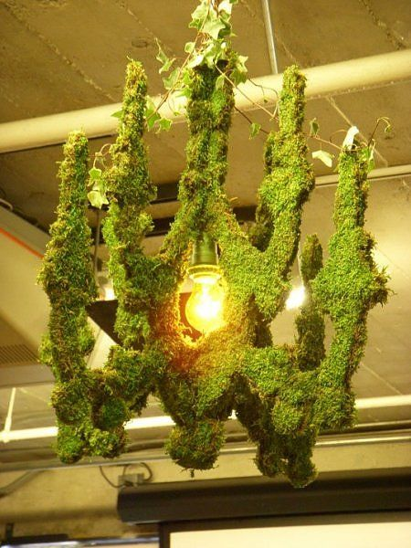 Chandelier covered in moss - no instructions, but I'd think a chicken wire frame, stuffed with peat maybe, soaked in water, and painted with a blended moss-and-milk mixture, hang in the shade and keep moist - this is by moss artist Edina Tokodi