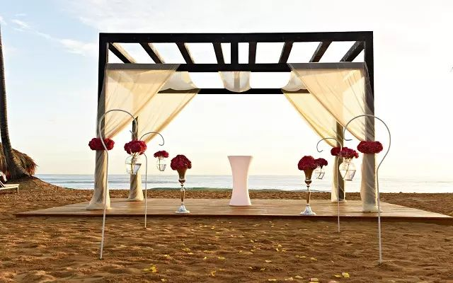 CHIC Punta Cana by Royalton – All-Inclusive – Adults Only has a wedding package that will ensure a memorable start to the rest of your lives.