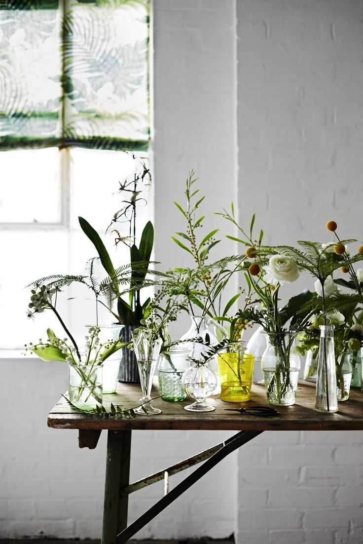 Single stems and sprigs cut from the garden and grouped en masse in an array of gleaming glass is a simple way to make an eye-catching arrangement. Photograph by Adrian Briscoe. Styling by Rose Hammick.