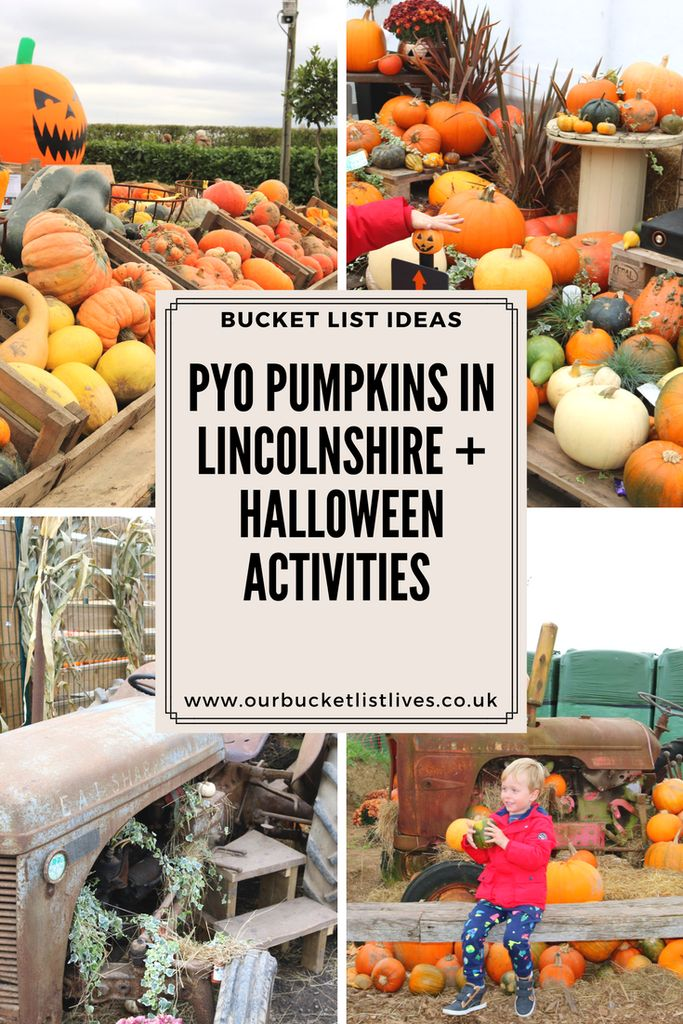 Pick Your Own PYO Pumpkins in Lincolnshire. Bell's gardening outlet near Boston. Halloween activities, pumpkin bouncy castle, pumpkin carving and more #Halloween #pyopumpkins #lincolnshire
