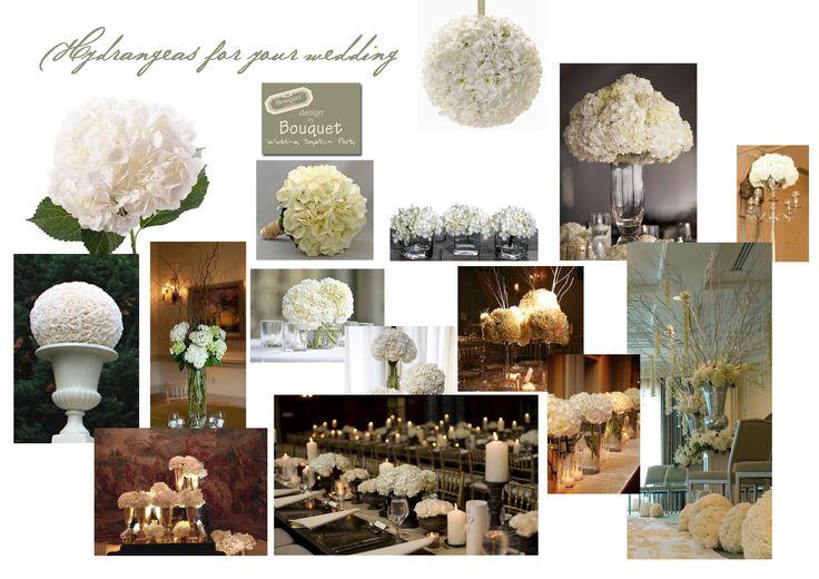 White hydrangeas for your wedding!
