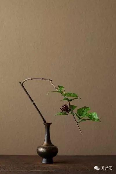 他用366朵野花,将日本禁欲之美表现到了极致