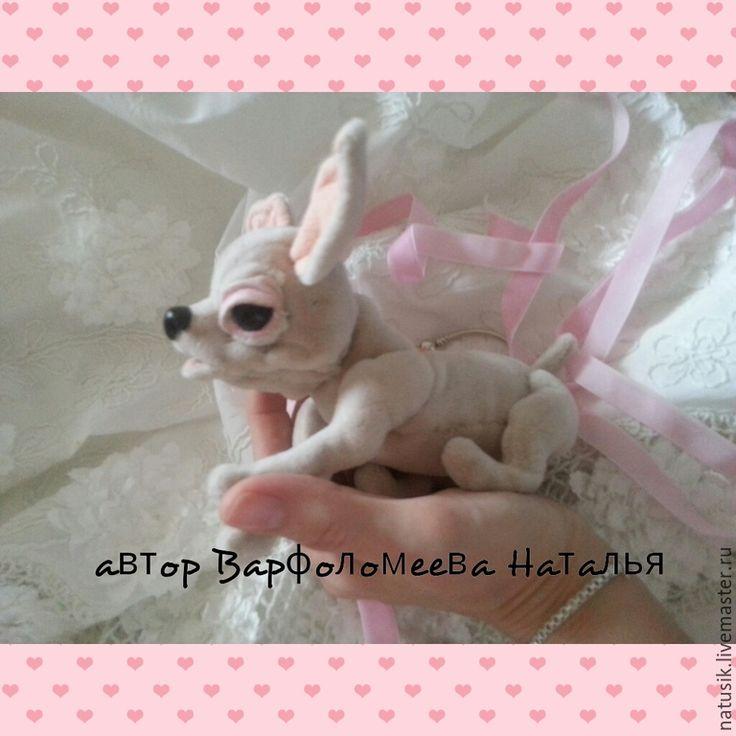 Купить Собачка чихуахуа - белый, собачка, щенок, чихуахуа, подарок девушке, подарок женщине