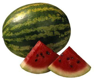 Growing Watermelon - Watermelons grow large -- but how do you know when they are done growing? With the many different types of watermelons and the many different sizes, it can be confusing. There are some signs to watch for that can indicate your watermelon is fully grown. We'll show you how to grow and harvest watermelons here. - http://home.howstuffworks.com/watermelon1.htm