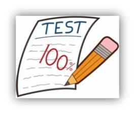 Evaluations pour l'année en numération, mesure, géométrie, raisonnement et gestion de données en lien avec les compétences du socle commun.