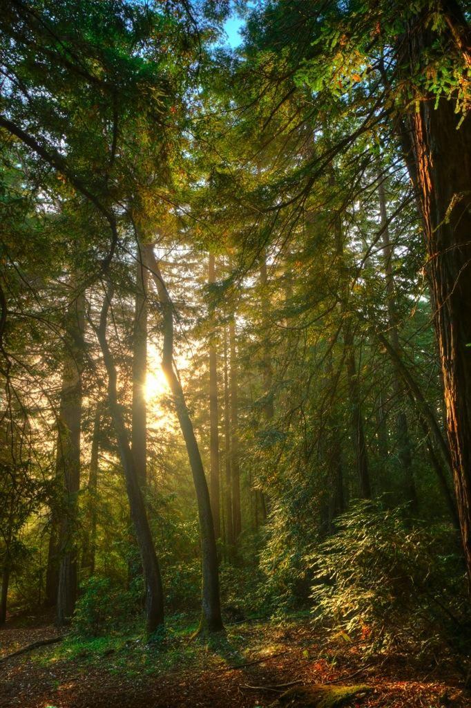 San Mateo County Parks | Parks Department