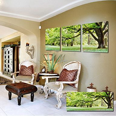 Canvas Set of 3 Landscape Summer Forest Trees Leaves Canvas Print Ready to Hang - USD $ 59.99
