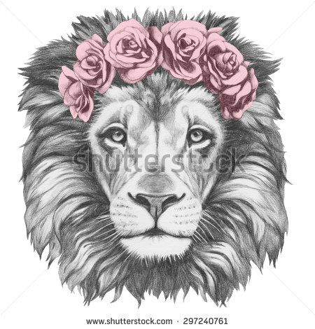 Pencil Sketch Lion Stock Photos, Images, & Pictures | Shutterstock