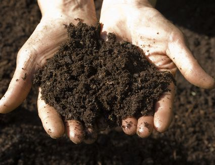 Do It Yourself Soil pH Test