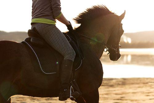 ahhh I want those breeches!