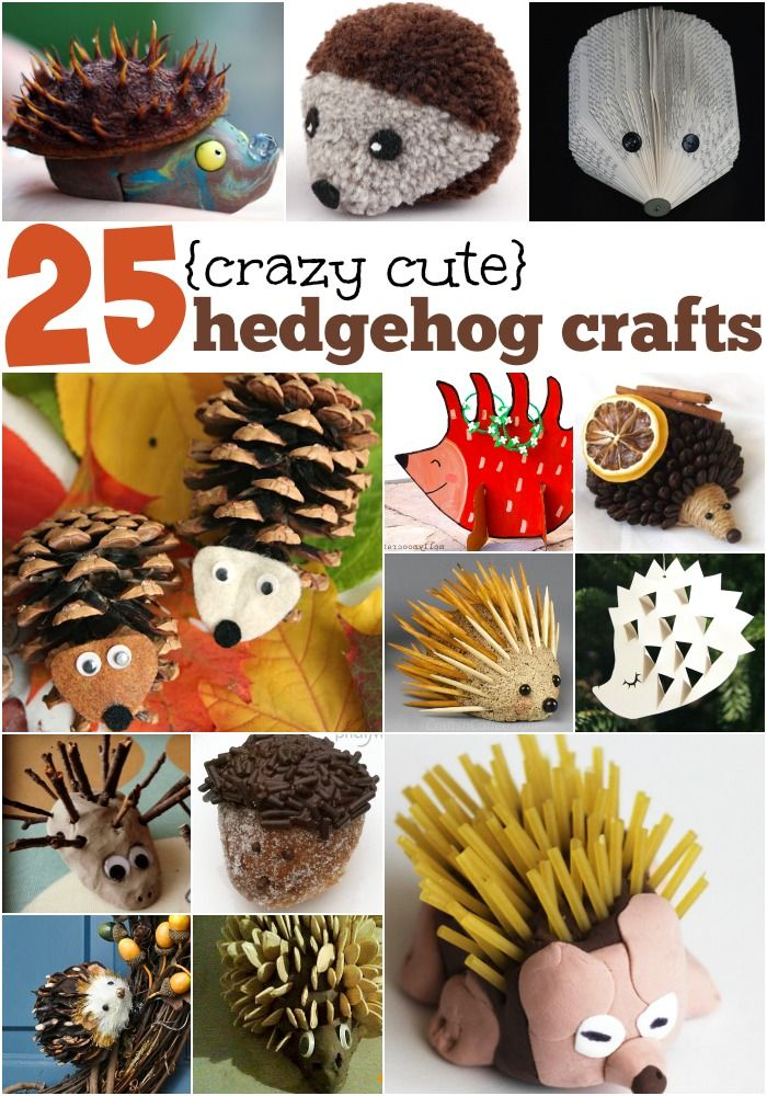 ~ Looking for a cute and cuddly (if prickly) animal to make a few crafts about? Here's the ultimate list of 25 {totally cute} Hedgehog Crafts
