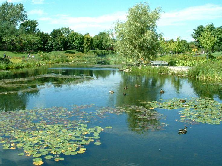Jardin d'eau du Domaine de Maizerets