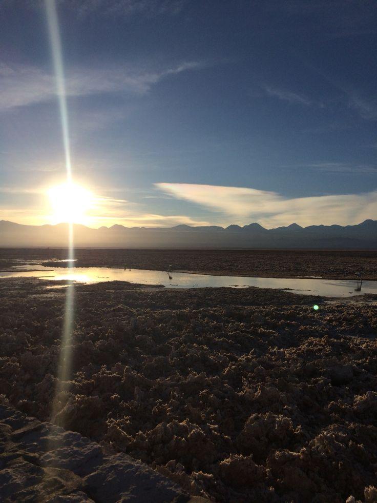 Salar del Carmen, Atacama