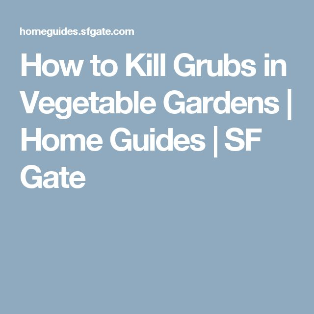 How to Kill Grubs in Vegetable Gardens | Home Guides | SF Gate