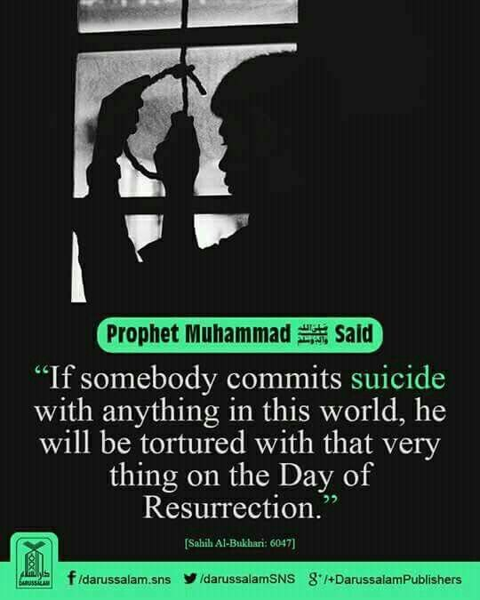 Suicide is prohibited (haraam) in islam. May Allah forgive our sins and guide us to the straight path. Aameen