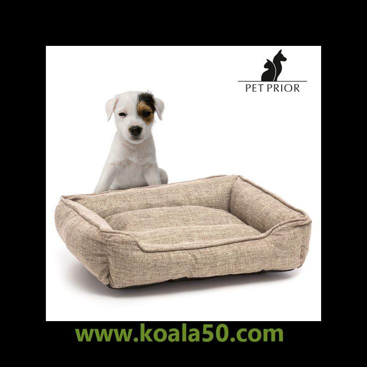 Cama para Perros Gold Pet Prior (48 x 42 cm) - 7,92 €   Si eres de los que se preocupan por su mascota y les gusta darles un descanso plácido y confortable, la cama para perros Gold Pet Prior (48 x 42 cm) es lo que estás buscando. ¡No te la pierdas!100...  http://www.koala50.com/cunas-colchonetas/cama-para-perros-gold-pet-prior-48-x-42-cm