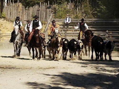 Deset westernovývh vesniček