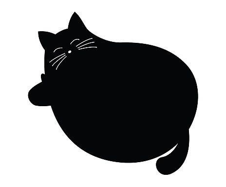 Lavagna in pvc adesivo gatto - 60x60 cm