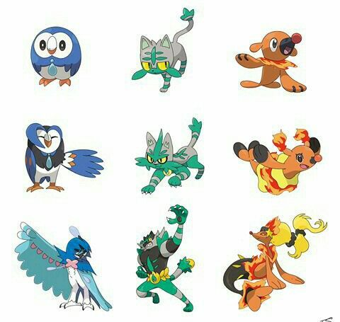 Inspirational Evolution Chart Real Pokemon Dewott wwwpicturesso