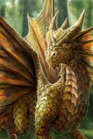 How handsome he is! (This is a close-up of Anne Stokes' dragon ... a few Pins above.)