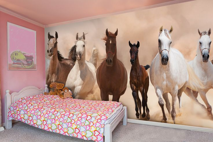 16 best images about equestrian wallpaper murals fro