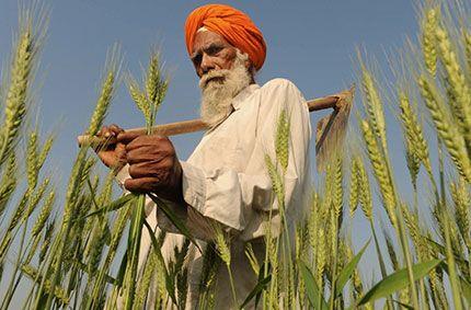 #India rurale: una vera scoperta