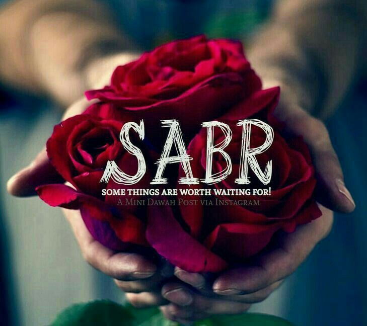 Wonderful Sabr  I Always Tought It Was Patience, Waiting Peacefully For The Troubled  Time To Pass.