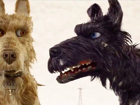 "Watch Isle of Dogs Full Movies Online Free HD<br><a href=""http://bit.ly/2xZmN7I"" rel=nofollow target=_blank>http://bit.ly/2xZmN7I</a><br><br>Isle of Dogs Off Genre : Comedy, Animation<br>Stars : Bryan Cranston, Edward Norton, Bill Murray, Jeff Goldblum, Kunichi Nomura, Greta Gerwig<br>Release : 2018-04-11<br>Runtime : 0 min.<br><br>Production : American Empirical Pictures<br><br>Movie Synopsis:<br>In the future, an outbreak of canine flu leads the mayor of a Japanese city to banish all dogs…"