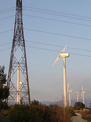 Homemade Windmills