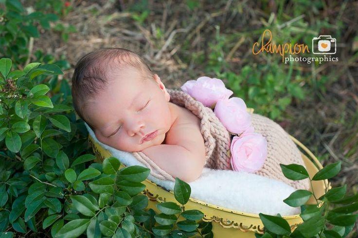Newborn Love #newborn #outdoornewborn #inlove Champion Photographics Mackay Qld
