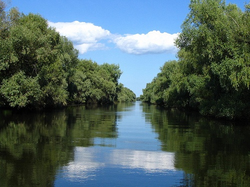 The Danube Delta - Romania