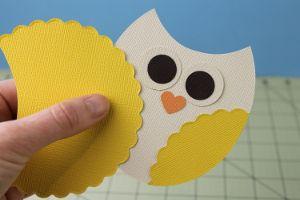 Owl Themed Party Decor